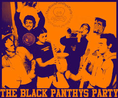 The Black Panthys Party